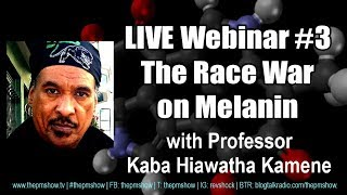 The Superiority of Melanin with Professor Kaba Hiawatha Kamene