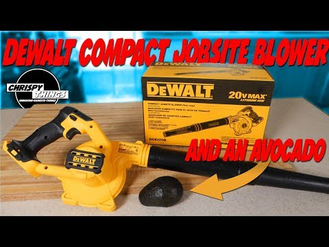 Testing the DeWalt Compact Jobsite Blower 20V: How POWERFUL is it?