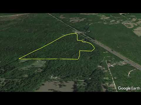 Gulf Hammock Downtown - 167 Acres For Hunting/Rural Estate FOR SALE In Gulf Hammock, FL