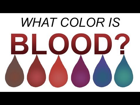 What color is blood REALLY? (Full length version)