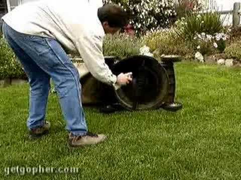 GopherHaul 13 - Lawn Care Entrepreneur Business Show