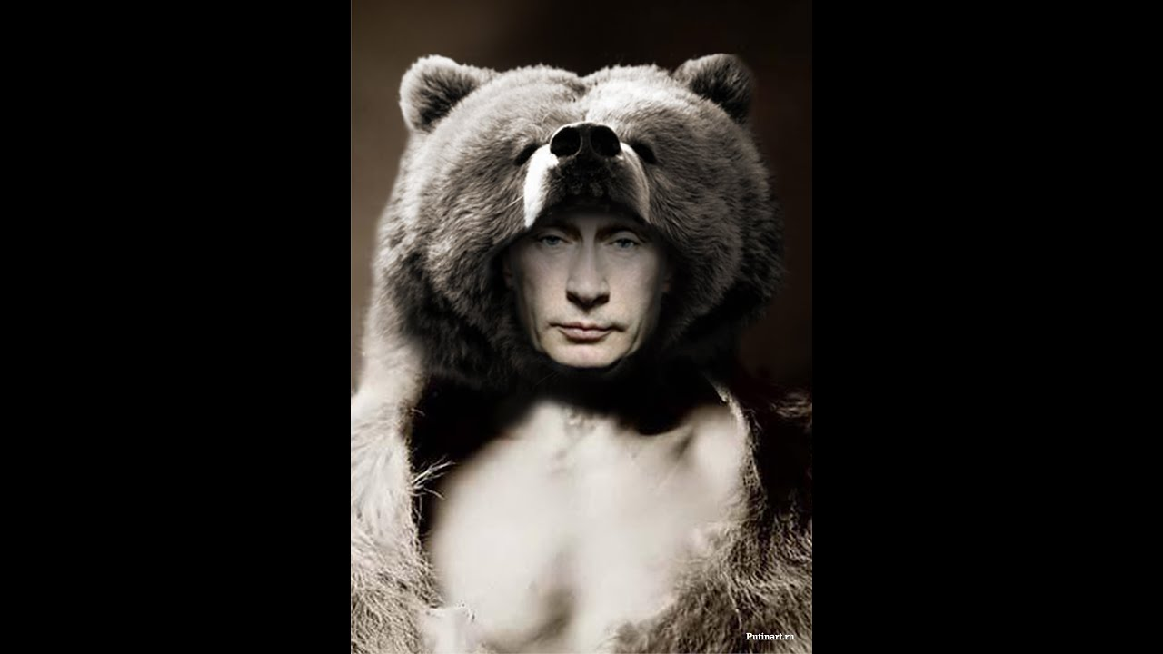 Image result for путин медведь