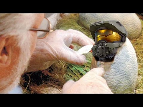 Top 10 Halo 5 Secrets and Easter Eggs