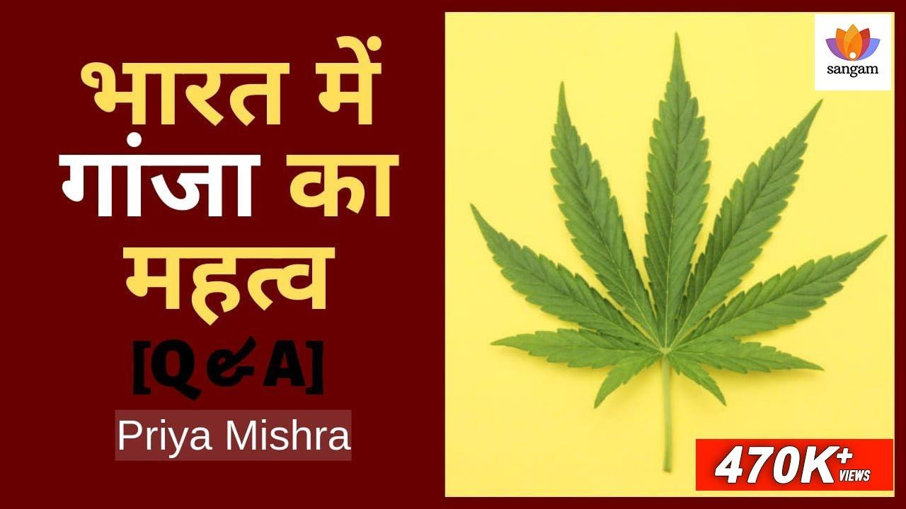 Download [Q&A] भारत में गांजा का महत्व | Cannabis in India | Priya Mishra | SangamTalks