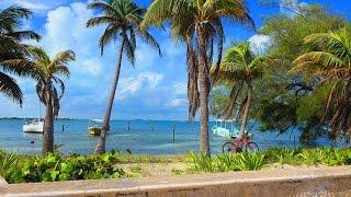 7 days, Isla Mujeres Mexico