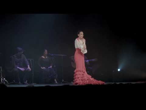 "Flamenco: Cia Samantha Alcon ""Solo Flamenco"""