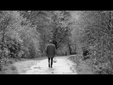 Iain Morrison - Like Wolves