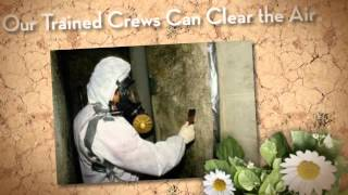 Mold Removal Mason City, IA  (641) 424-6733