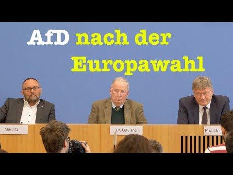 AfD-Chefs Meuthen & Gauland nach der Europawahl - BPK 27. Mai 2019