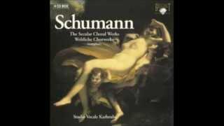 Schumann Drei Gedichte  Op.29
