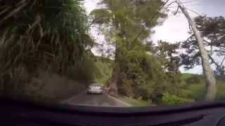 Our Journey to the Boh Tea Plantation Sungai Palas (1080P FHD)