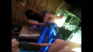 Гарра Руффа в Магелане. Киев(Фиш-массаж рыбками Гарра Руфа и отшелушевающий пилинг рук и ног Киев ТЦ Магелан 3 этаж спа-салон Beauty Spa Fish...., 2012-10-28T12:09:34.000Z)