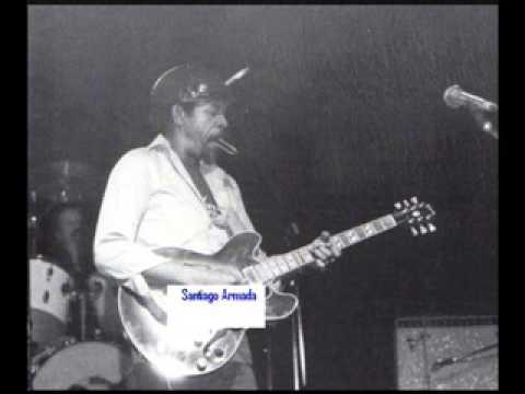 Luther Allison - Chicago Blues Festival - Grant Park, 1990