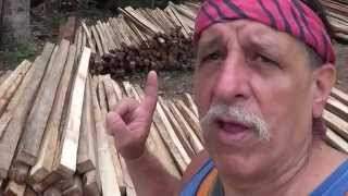 LUMBER YARDS IN THE PHILIPPINES ROUGH SAWN LUMBER