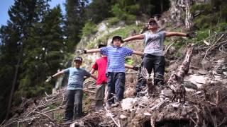180 Tage im Bergwald