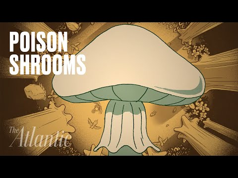 Death-Cap Mushrooms Are Terrifying and Unstoppable