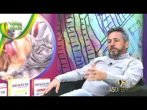 VT    LAURO FRANCO TEIXEIRA