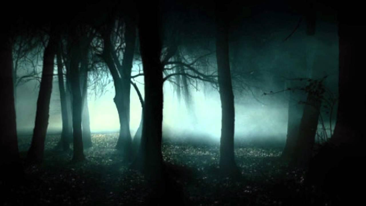 Brightness In The Dark