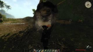 Risen 2 (PC) — VS Granne Gozzo (2 bombs)