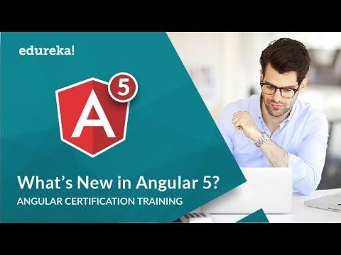 What's New In Angular 5 | Angular 5 New Features | Angular 5 Tutorial For Beginners | Edureka
