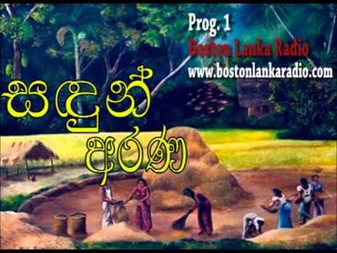 Sandun Arana - Prog 1