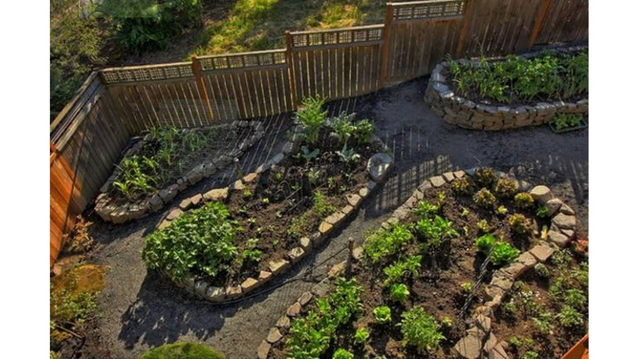Small backyard vegetable garden - YouTube on Small Backyard Landscaping  id=24307