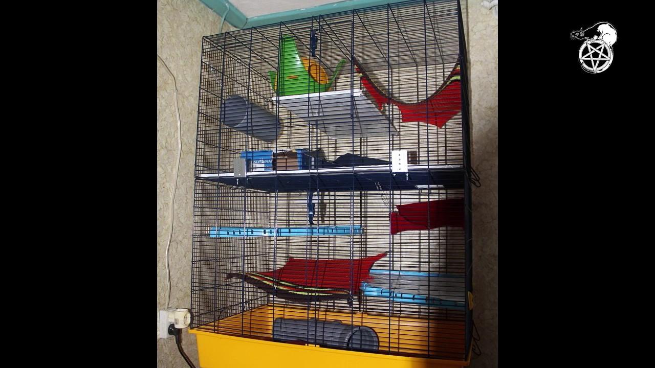 Клетка для крысы своими руками фото 226