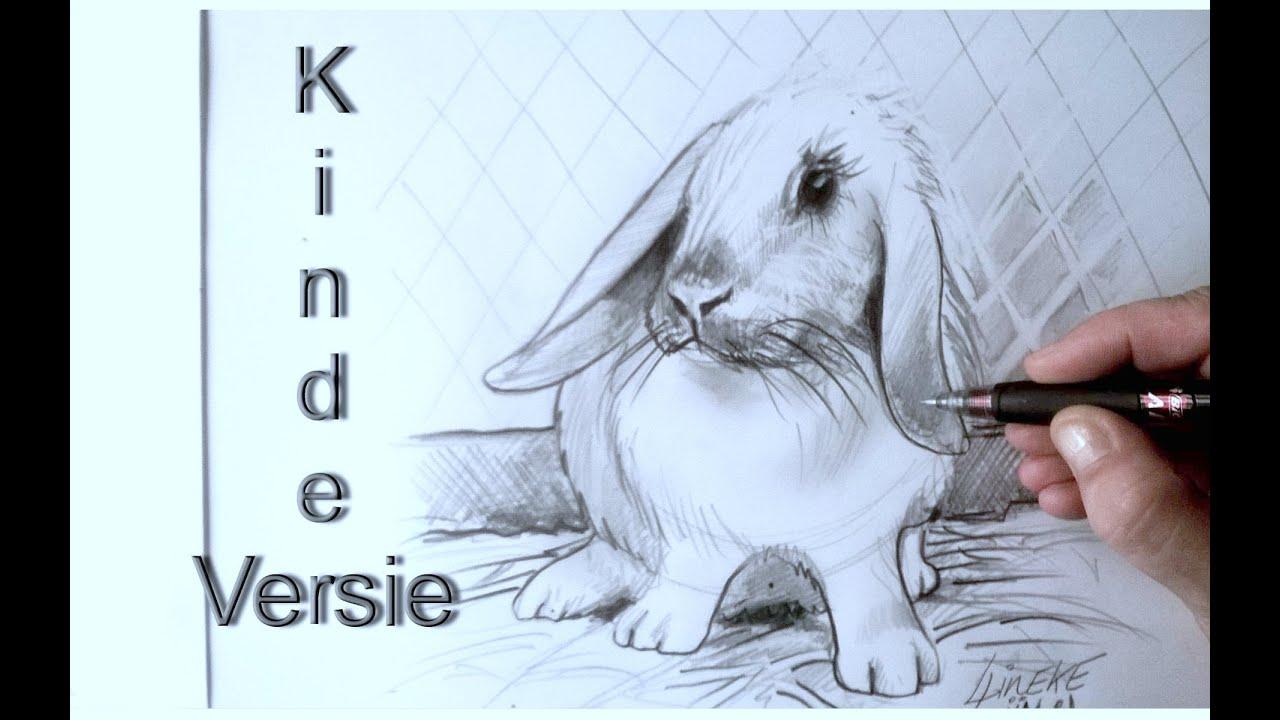 Spiksplinternieuw KONIJN tekenen voor beginners Grafiet tekening - YouTube VL-58