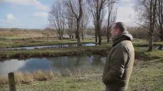 A Day at the Fish Farm - CountryStyle