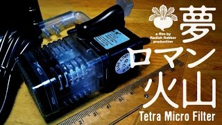水槽【テトラ・マイクロフィルター使用感】アクアリウム thumbnail