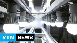 LED 조명 성능 천차만별… 감전·누전 위험도  YTN