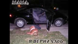 Funny Videos - Funny Photos №1 Фото приколы №1