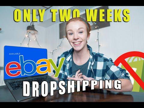 I Tried EBAY Dropshipping For Two Weeks... (BEGINNER) | Make Money Online 2020