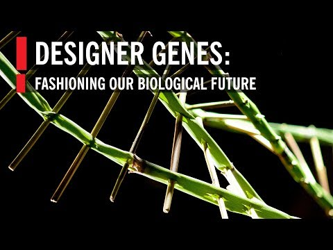 Designer Genes: Fashioning our Biological Future