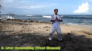 Five Elements QiGong - Ngũ Hành