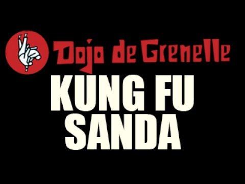 Cours de Kung Fu Sanda à Paris au Dojo de Grenelle