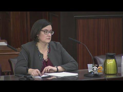 De Blasio's DOI Nominee Grilled By City Council