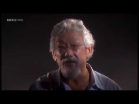 David Suzuki - Economics Is A Form Of Brain Damage