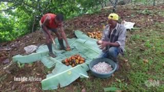 Alegio Chocolate / Claudio Corallo - CNN: Sao Tome and Principe's chocolate revival.