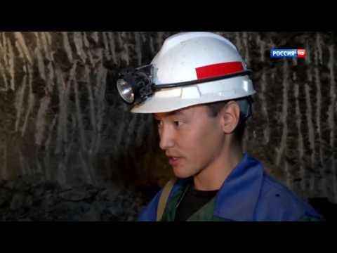 Охота на бобра, как охотиться на бобров / Сибирский охотник