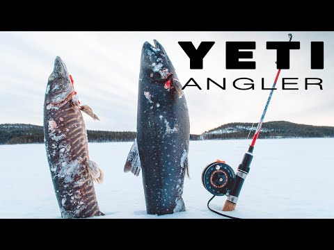 Не каждый рыболов поймет смысл такой рыбалки. Так ведь ? Голец 2019.