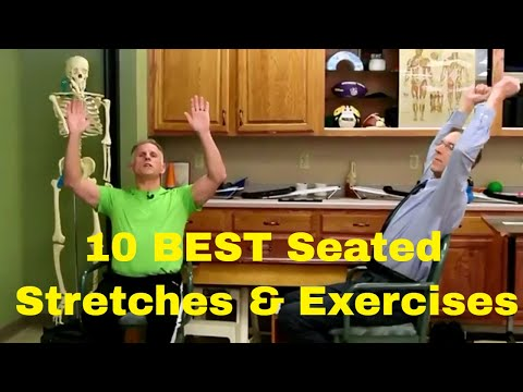 10 Best Seated Stretches & Exercises for Seniors and Office Workers.