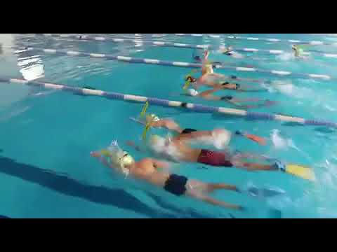 Breeding Swimmers