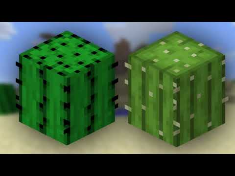 The BIZARRE evolution of  MINECRAFT CACTI
