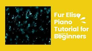 Best Fur Elise Piano Tutorial for Beginners