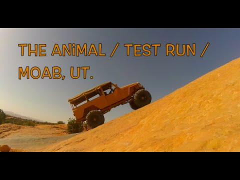 Jeep TJ Wrangler Custom Build by Animal Off-Road THE ANIMAL