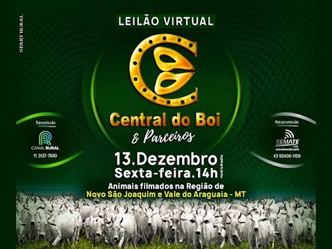 Leilão Virtual Central do Boi & Parceiros