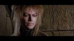 Die Reise ins Labyrinth /  Labyrinth