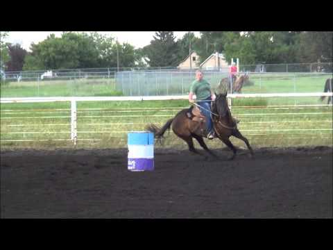 McHenry County NBHA Barrel Racing July 16 2013