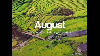 Vietnam Airlines - Fall in love with Sapa throughout the year